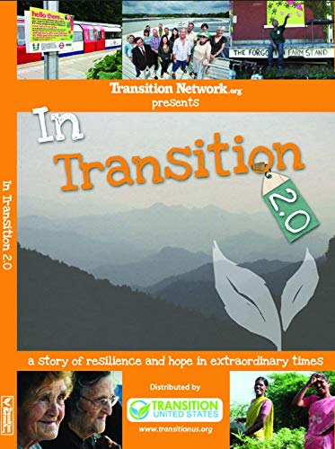 9780615690070: In Transition 2.0