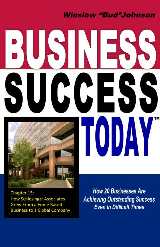 9780615710938: Business Success Today: How 20 Businesses Are Achieving Outstanding Success Even in Difficult Times
