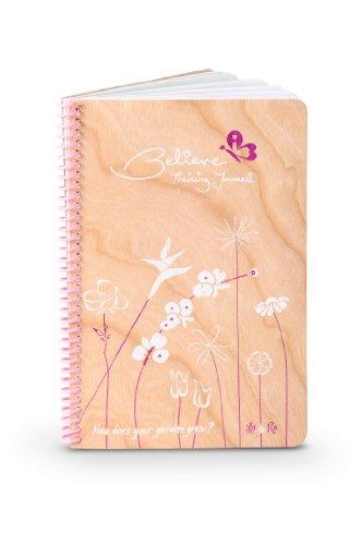 9780615732800: Believe I Am Training Journal