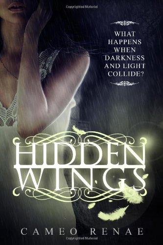9780615757384: Hidden Wings