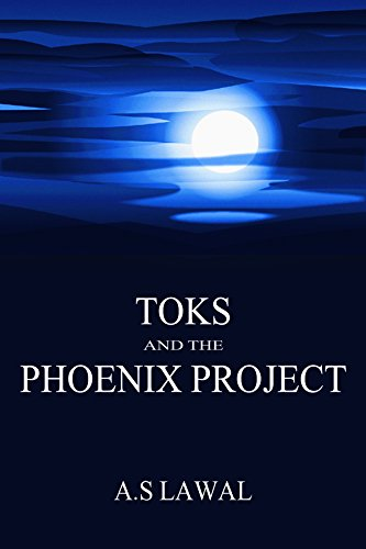 9780615780368: Toks and the Phoenix Project