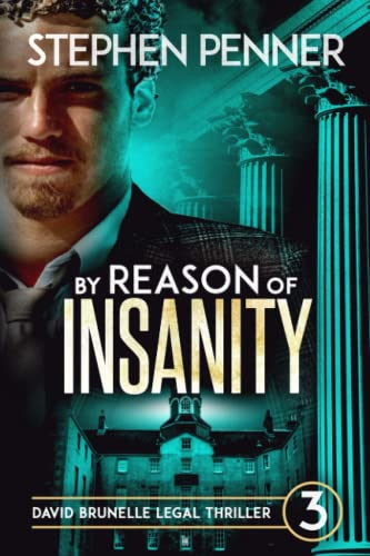 9780615821658: By Reason of Insanity: David Brunelle Legal Thriller #3