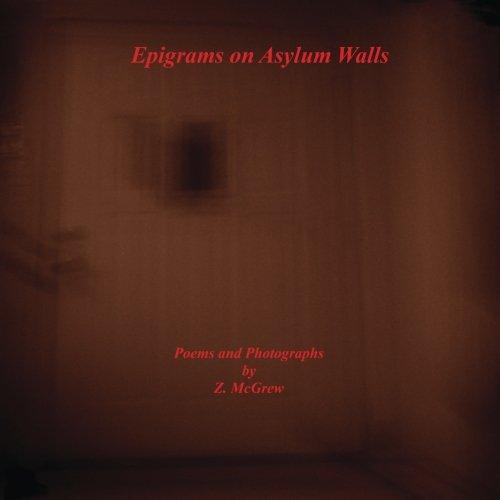 9780615844060: Epigrams on Asylum Walls