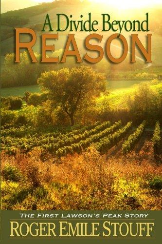9780615870458: A Divide Beyond Reason