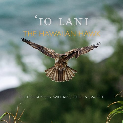 9780615879291: Io Lani: The Hawaiian Hawk