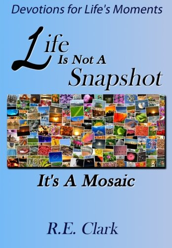 9780615889351: Life Is Not A Snapshot: It's A Mosaic!