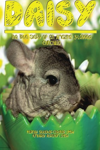 Daisy The True Story of an Amazing 3 Legged Chinchilla: Marney Studaker-Cordner Lmsw