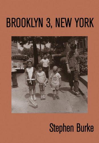 9780615916880: Brooklyn 3, New York