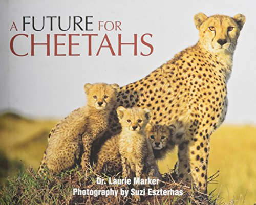 9780615933207: Future for Cheetahs