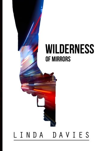 9780615943343: Wilderness of Mirrors