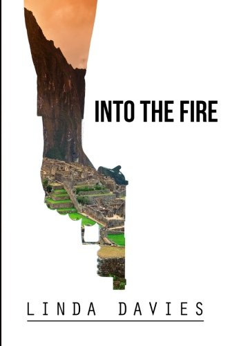 9780615951249: Into the Fire
