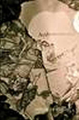 9780615981314: Autonomous