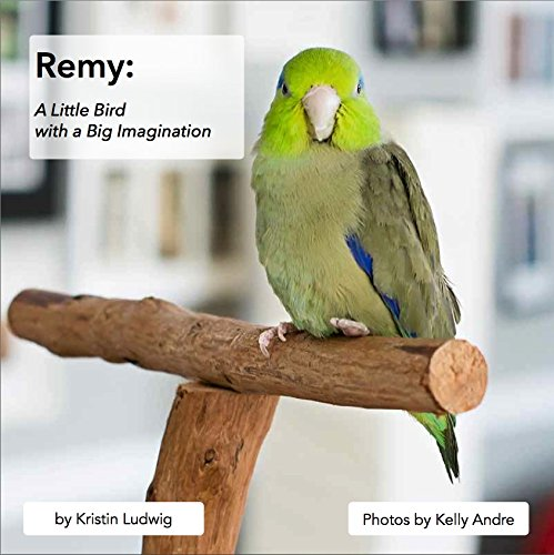 9780615996141: Remy: A Little Bird with a Big Imagination