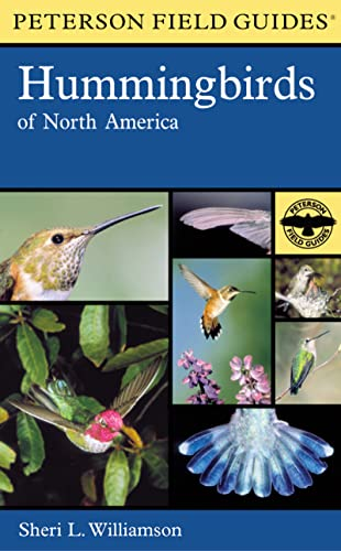 9780618024964: A Field Guide to Hummingbirds of North America (Peterson Field Guides)