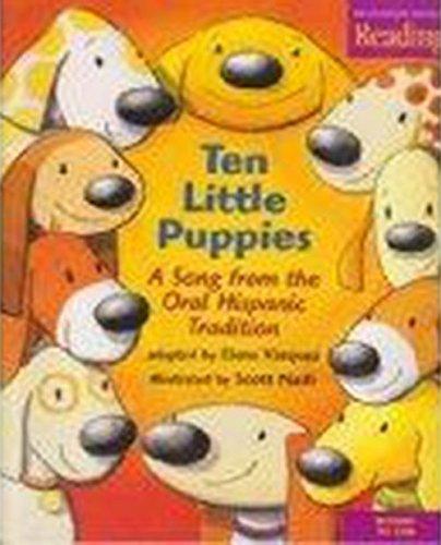 Houghton Mifflin Reading: Big Book Grade K Ten Little Puppies: MIFFLIN, HOUGHTON