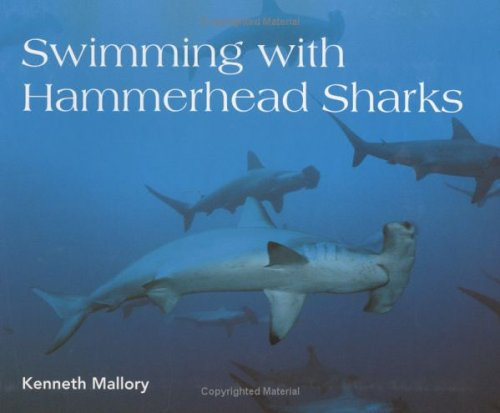 9780618055432: Swimming with Hammerhead Sharks (Scientists in the Field Series)