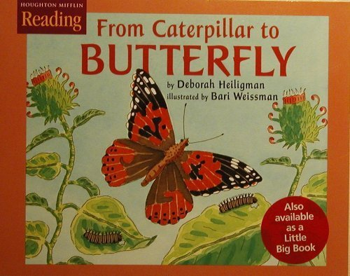 9780618067091: Houghton Mifflin Reading: The Nation's Choice: Little Big Book Grade 2 Theme 4 - From Caterpillar to Butterfly