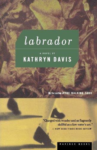 9780618075423: Labrador