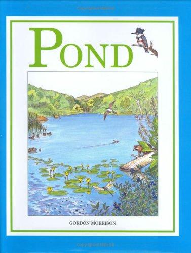 9780618102716: Pond
