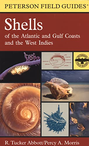 9780618164394: Shells of the Atlantic and Gulf Coasts and the West Indies
