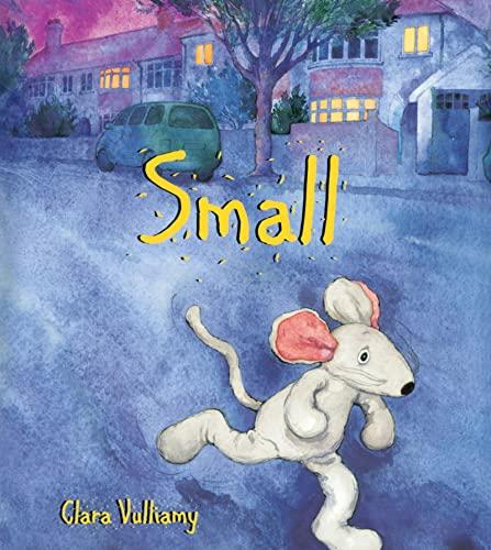 9780618194599: Small