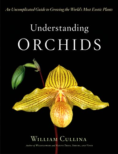 9780618263264: Understanding Orchids: An Uncomplicated Guide To Growing The World's Most Exotic Plants