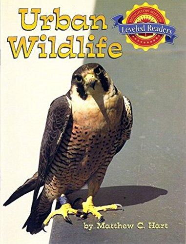Houghton Mifflin Reading Leveled Readers: Level 3.4.1 Abv Lv Urban Wildlife: HOUGHTON MIFFLIN