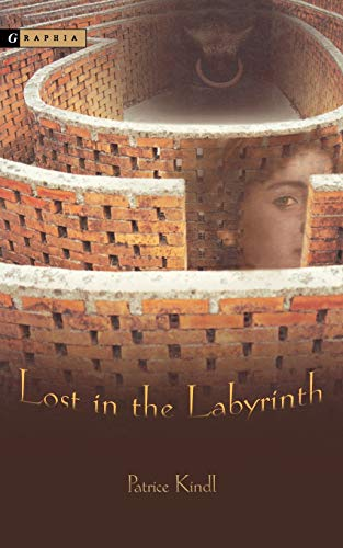 9780618394029: Lost in the Labyrinth