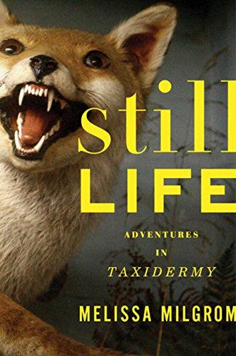9780618405473: Still Life: Adventures in Taxidermy