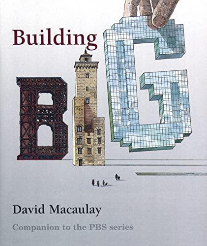 9780618465279: Building Big
