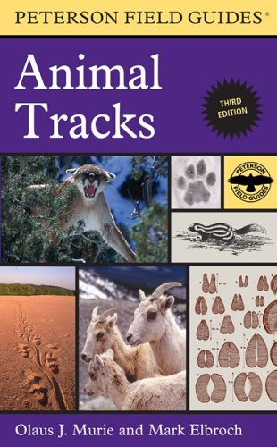 9780618517428: A Field Guide To Animal Tracks