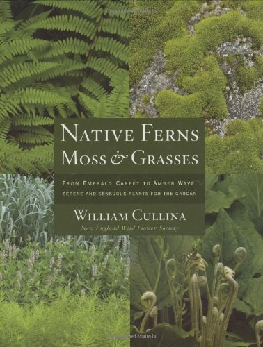 9780618531189: Native Ferns, Moss & Grasses