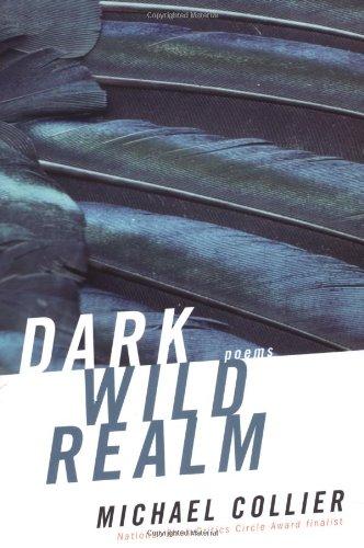 9780618582228: Dark Wild Realm