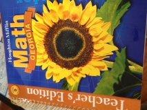 9780618590544: Houghton Mifflin Mathmatics Georgia: Teacher's Edition Vol 1 Level 5 2007