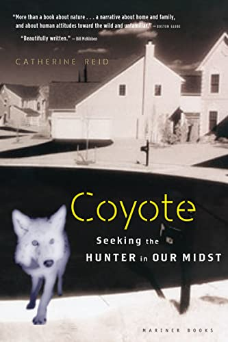 9780618619290: Coyote: Seeking the Hunter in Our Midst