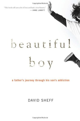 Beautiful Boy: A Father's Journey Through His Son's Meth Addiction, Library Edition: Sheff,...