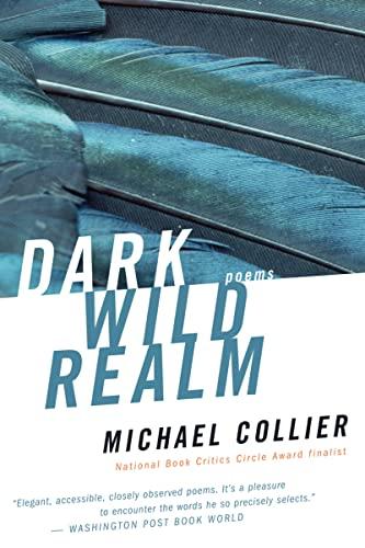 9780618919918: Dark Wild Realm
