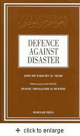 9780620196888: Defence Against Disaster