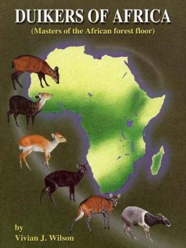 9780620337731: Duikers of Africa - Masters of the African Forest Floor: A Study of Duikers - People - Hunting and Bushmeat