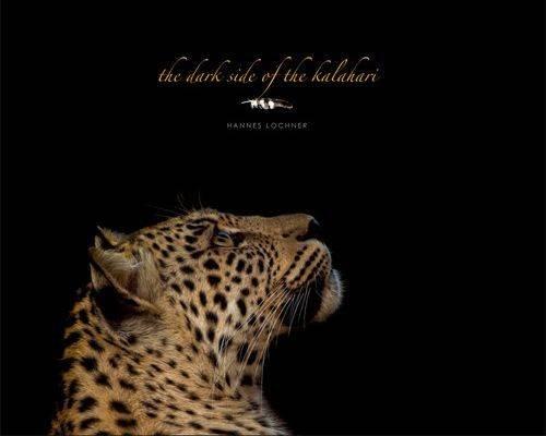 9780620562591: The dark side of the Kalahari