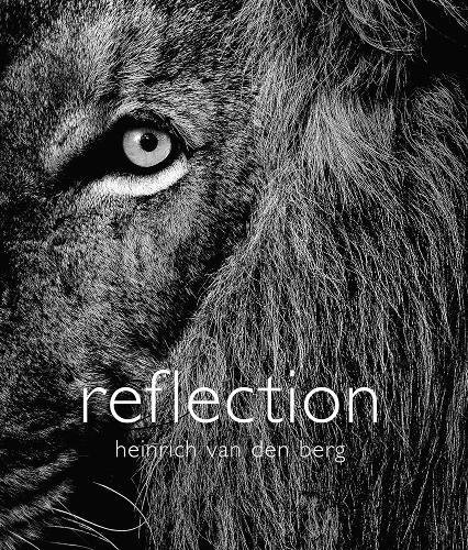 9780620611114: Reflection