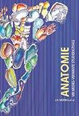 9780627019654: Anatomie Vir Medies-verwante Studierigtings (Afrikaans Edition)