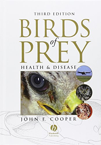 9780632051151: Birds of Prey: Health and Disease
