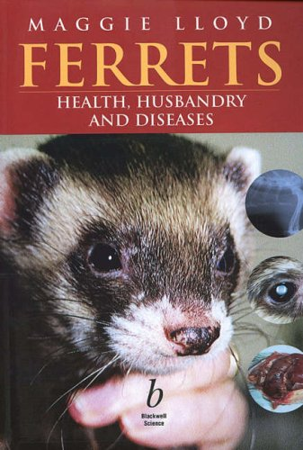 9780632051786: Ferrets: Health, Husbandry and Diseases