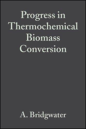 9780632055333: Progress in Thermochemical Biomass Conversion