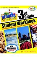 9780635025777: The Georgia Experience 3rd Grade Student Workbook