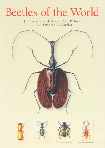 9780643065574: Beetles of the World: A Key and Information System for Families and Subfamilies