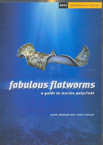 9780643069640: Fabulous Flatworms: A Guide to Marine Polyclads