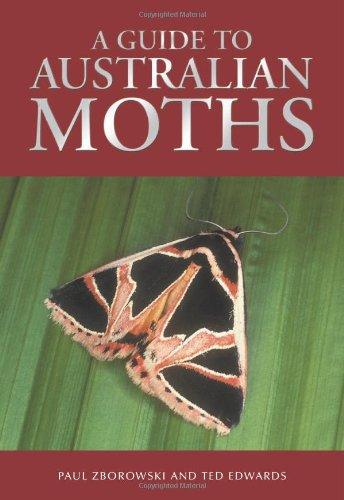 9780643091597: A Guide to Australian Moths