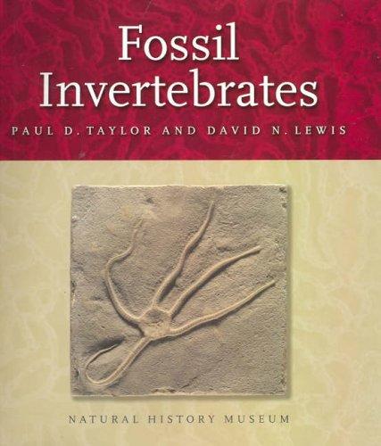 9780643091627: Fossil Invertebrates
